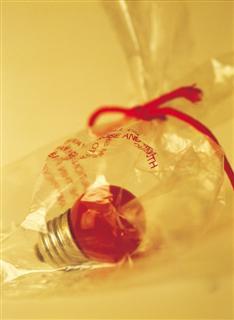 Bag with Light Bulb Inside